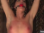 Hot sluts love hardcore BDSM pleasures