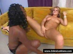 Zebra Lesbians - Sexy lesbian ebony fuck with strapon 12