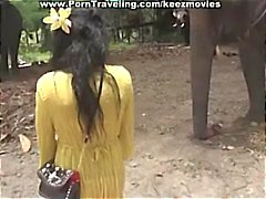 Brunette babe gets face fucking by elephant black dick then goes to visit the elephants