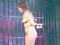 Lovely japanese doll tied and tortured for extreme pleasure