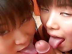 Two cute Japanese teens playing with a cock