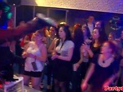 European party teens sucking dicks in the club