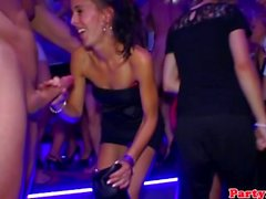 Real party euro amateur gets fucked roughly