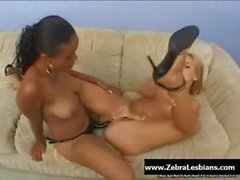 Zebra Girls - Ebony lesbian babes enjoy deep strap-on fuck 20