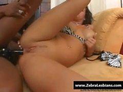 Zebra Lesbians - Sexy ebony lesbians fuck with strap-on toy 07