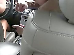 fashionable babes sucking dick in car